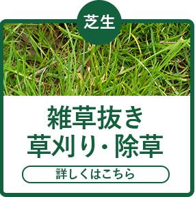 雑草抜き草刈り・除草