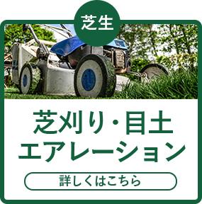 芝刈り・目土エアレーション